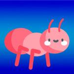Как при переезде не перевезти муравьев