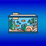 Как перевозить аквариум с рыбками при переезде